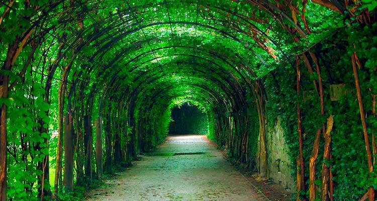 Caminhar pelo jardim de Salzburgo