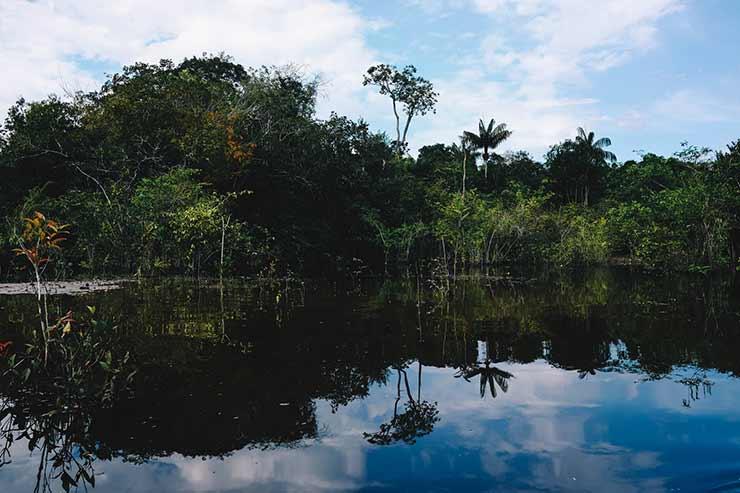Manaus, AM ecoturismo