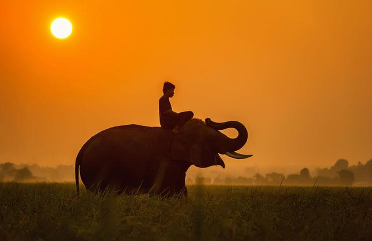 Quanto custa o seguro viagem para África?