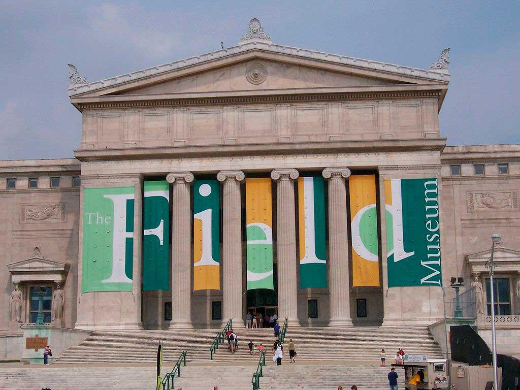 O que fazer em Chicago: Conhecer o Field Museum
