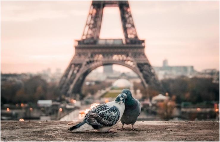Turismo na Europa França