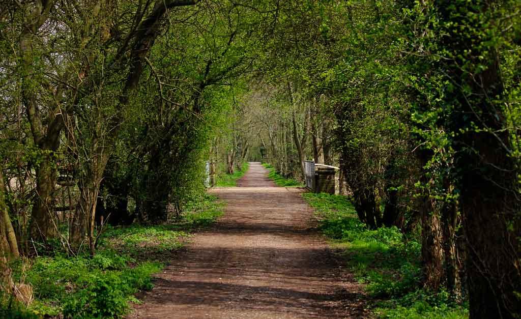 Dicas de passeios na Inglaterra