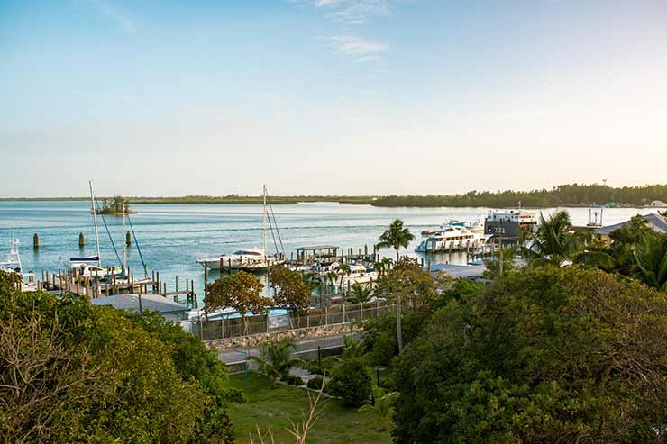 Bimini Harbour Bahamas