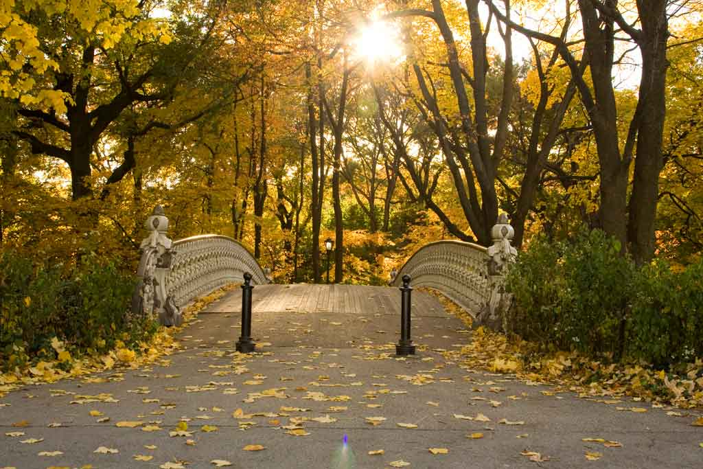 Foto do Central Park no outono