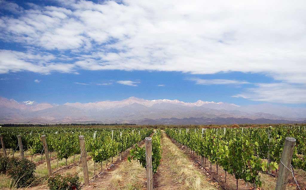 Vinícolas famosas em Mendoza