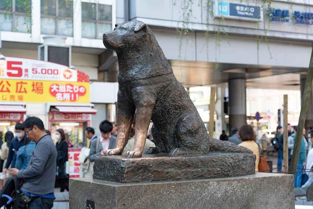 Toquio Hachiko memorial statue