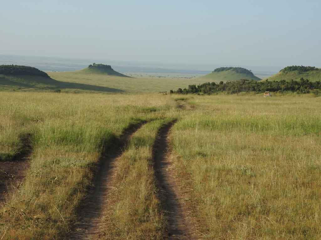 Roupas para Safari melhor época para visitar