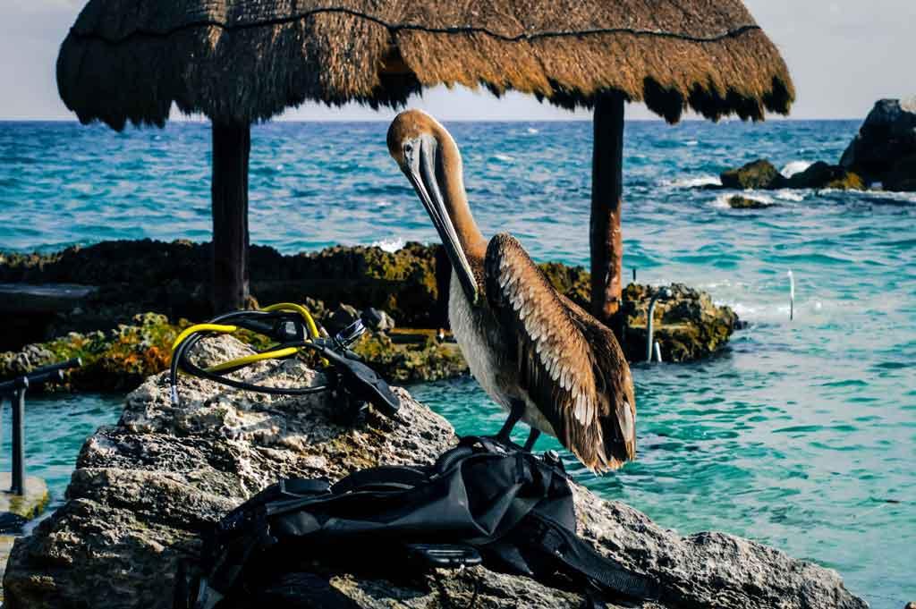 Casamento em cancun vantagens