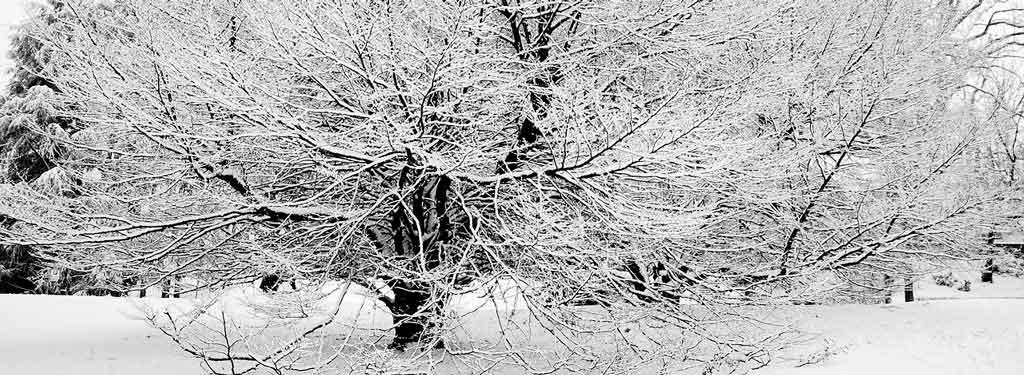 Inverno na Itália turim