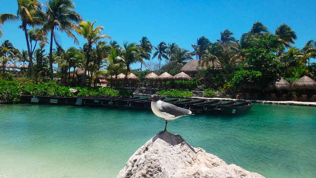 Viajar para Cancún sistema de saúde