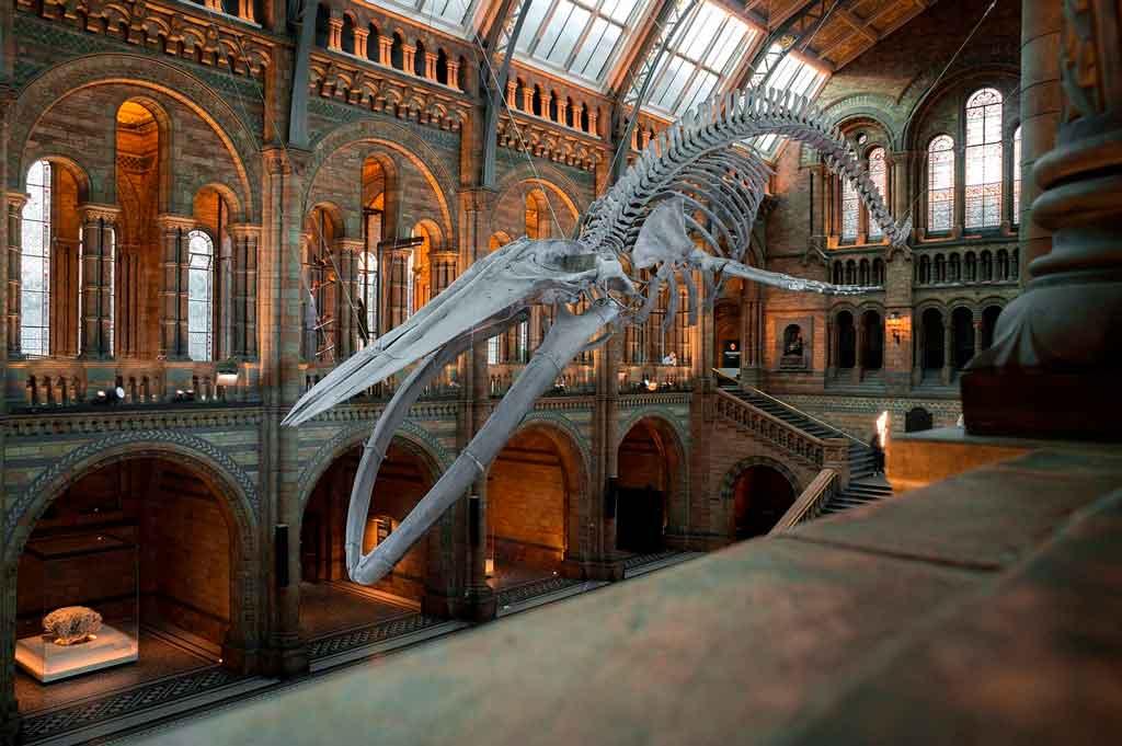 Londres com crianças museus