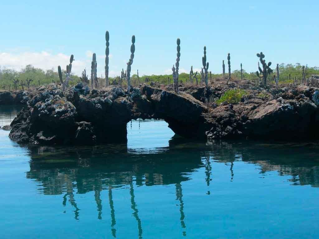 Ilha Galapagos qual a melhor época