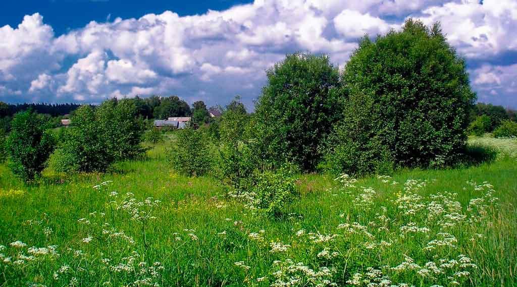 Clima da Rússia primavera