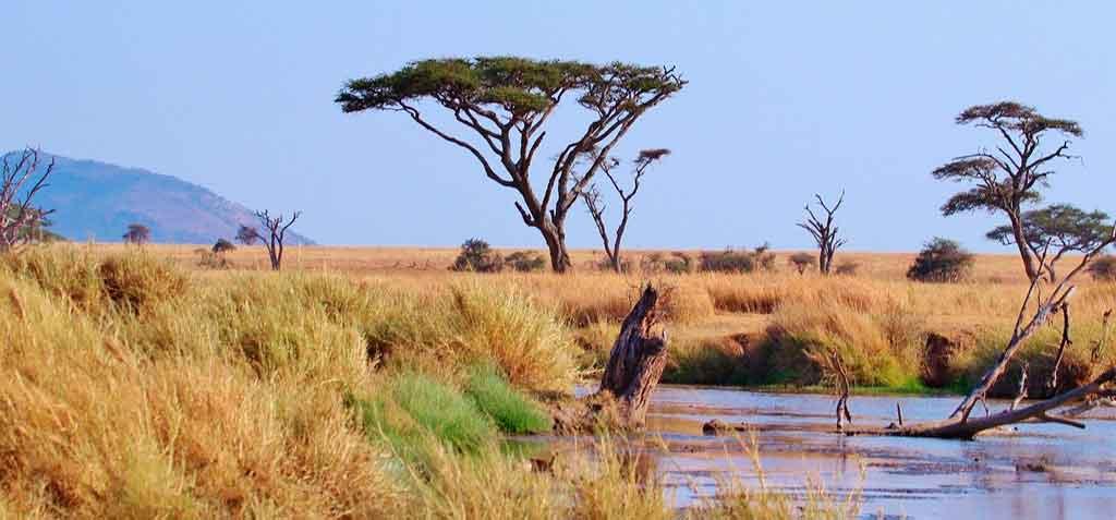 Tanzânia melhor época