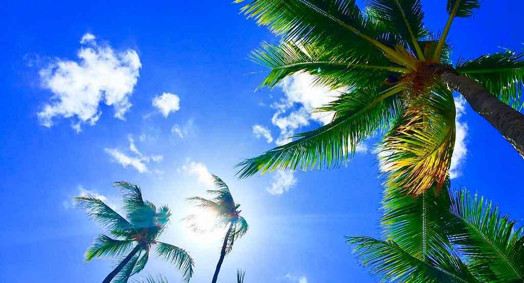 Onde fica o Havaí: Curiosidades