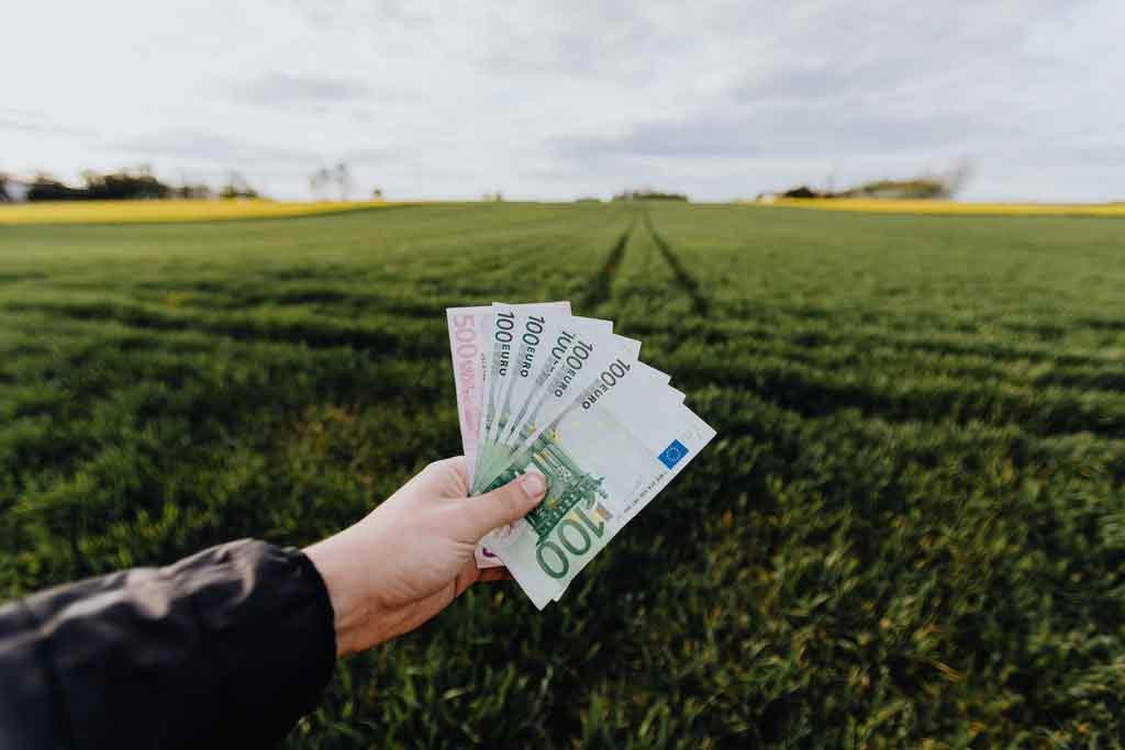 Moeda de chipre: dinheiro