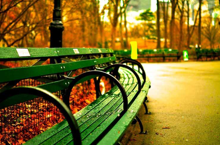 O que tem para fazer no Central Park?