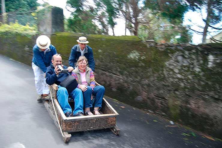 Carros de Cesto da Madeira
