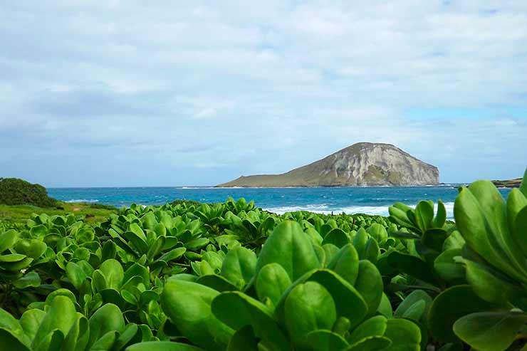 Onde fica a ilha de Maui?