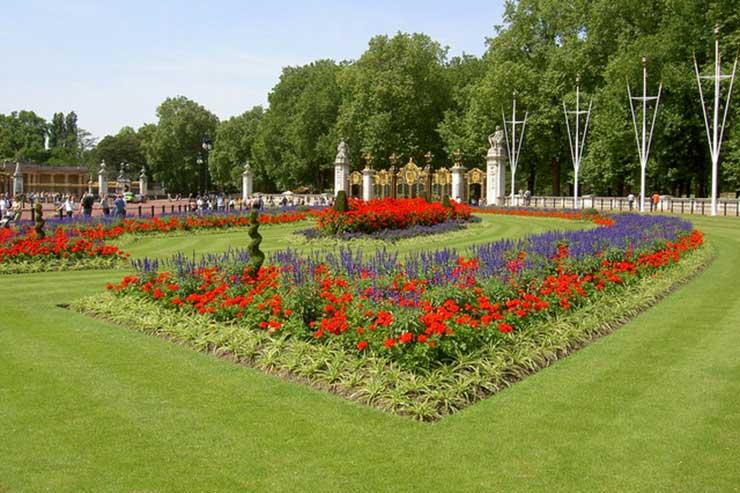 Buckingham Palace Flower Beds